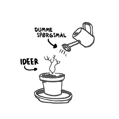Dumme spørgsmål, ideerne vokser