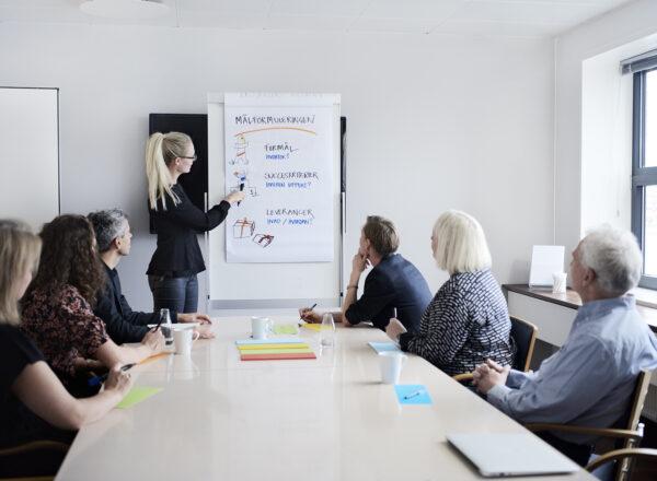 Projektledelse og projektorganisering